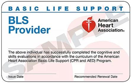 美国心脏协会基础生命支持BLS急救证书
